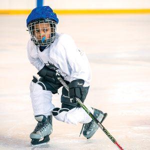 Hokejova vystroj a hokejky